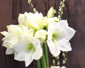 Envoyez vos bouquets de fleurs partout à Genève avec Côté Fleurs